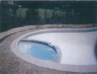 03 02 cinderella pool design