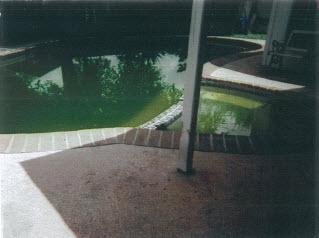 15 01 cinderella pool